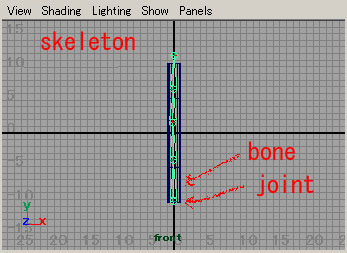 Maya tutorials: character setup (1): skeleton and skinning